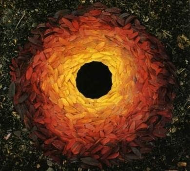 Andy Goldsworthy 3.jpg